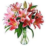 www.gifts4singapore.com
